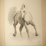 Details: Zeichnung Pferd 1