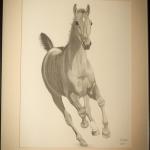 Details: Zeichnung Pferd 2