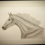 Details: Zeichnung Pferd 5