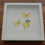 Details: Schmetterlingsbild Gelb - Trio 2