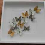Details: Schmetterlingsbild Weiss/Gelb/Oliv